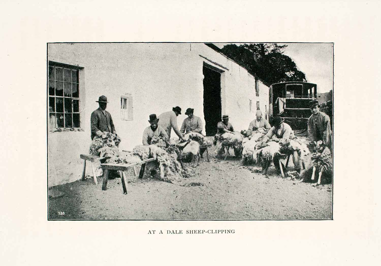 1902 Print Dale Sheep Clipping Wool England Animal Sheering Agriculture XGEA3