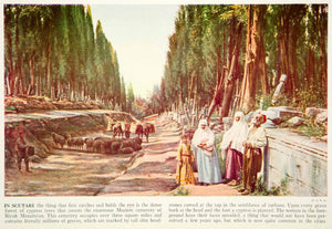 1938 Color Print Biyuk Mezaristan Cemetery Scutari District Constantinople XGGD4