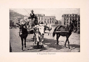 1912 Print Neapolitan Charioteer Chariot Horse Cow Donkey Wagon Italy XGIA2