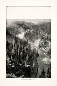 1902 Print Yellowstone National Park River Falls Forest Cliffs Wyoming XGNB6