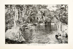 1899 Print Ferry Puente Real Canoe Paddle Donkey Burro River Mexico Jungle XGTB2