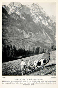 1928 Print Agriculture Plow Plough Dolomites Mountain Alps Italy Cow Field XGTB7