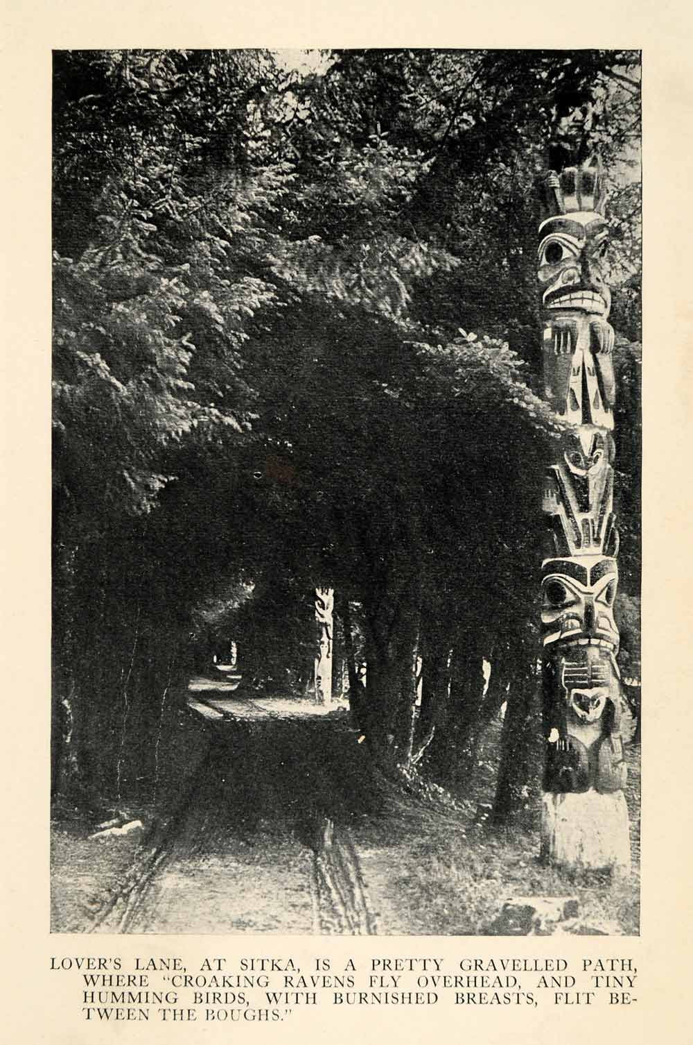 1913 Halftone Print Lovers Lane Sitka Alaska Path Humming Birds Tree-lined XGU4