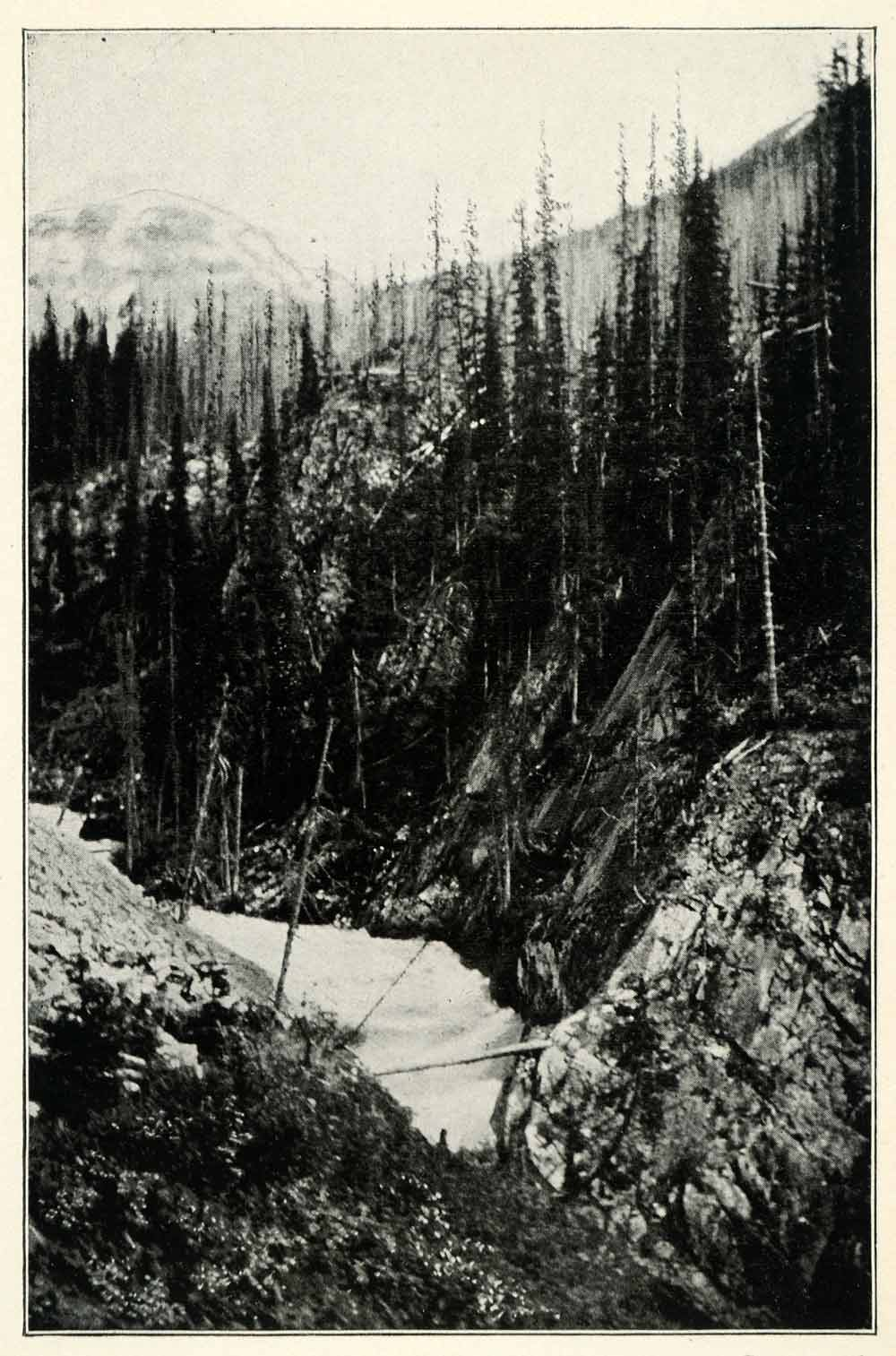 1901 Print Kicking Horse Pass Yoho National Park Canada River Nature XGU5