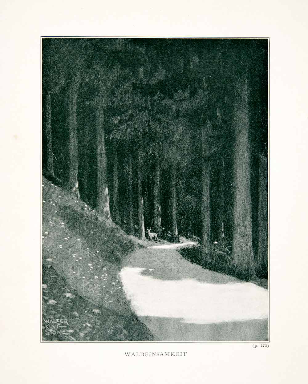 1910 Print Walter King Stone Waldeinsamkeit Deer Forest Woods Germany XGUB8