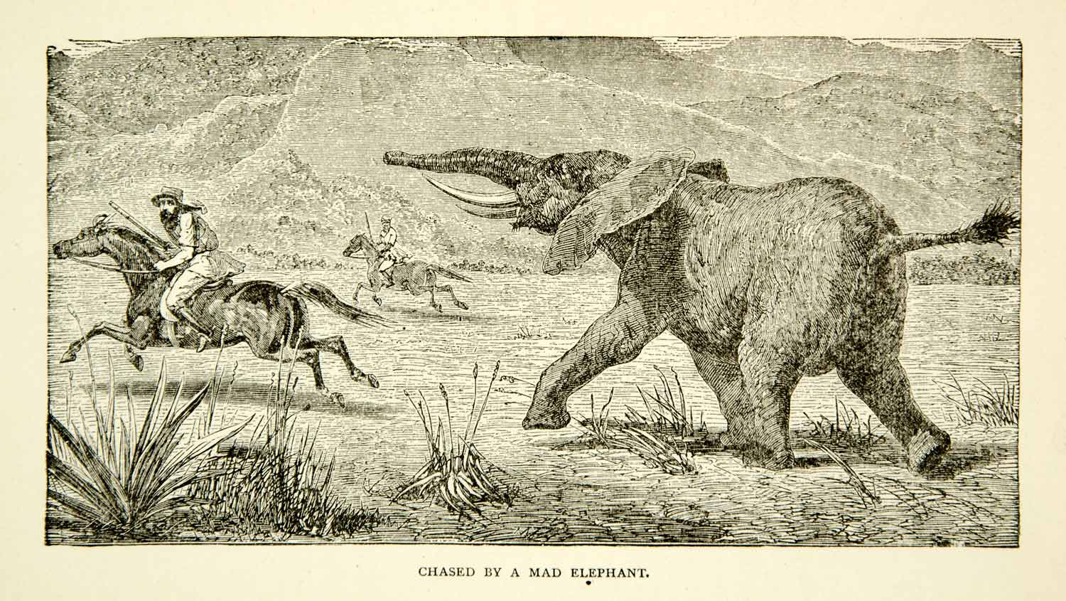 1884 Wood Engraving Samuel Baker Elephant Charge Expedition Africa Horse XGZC7