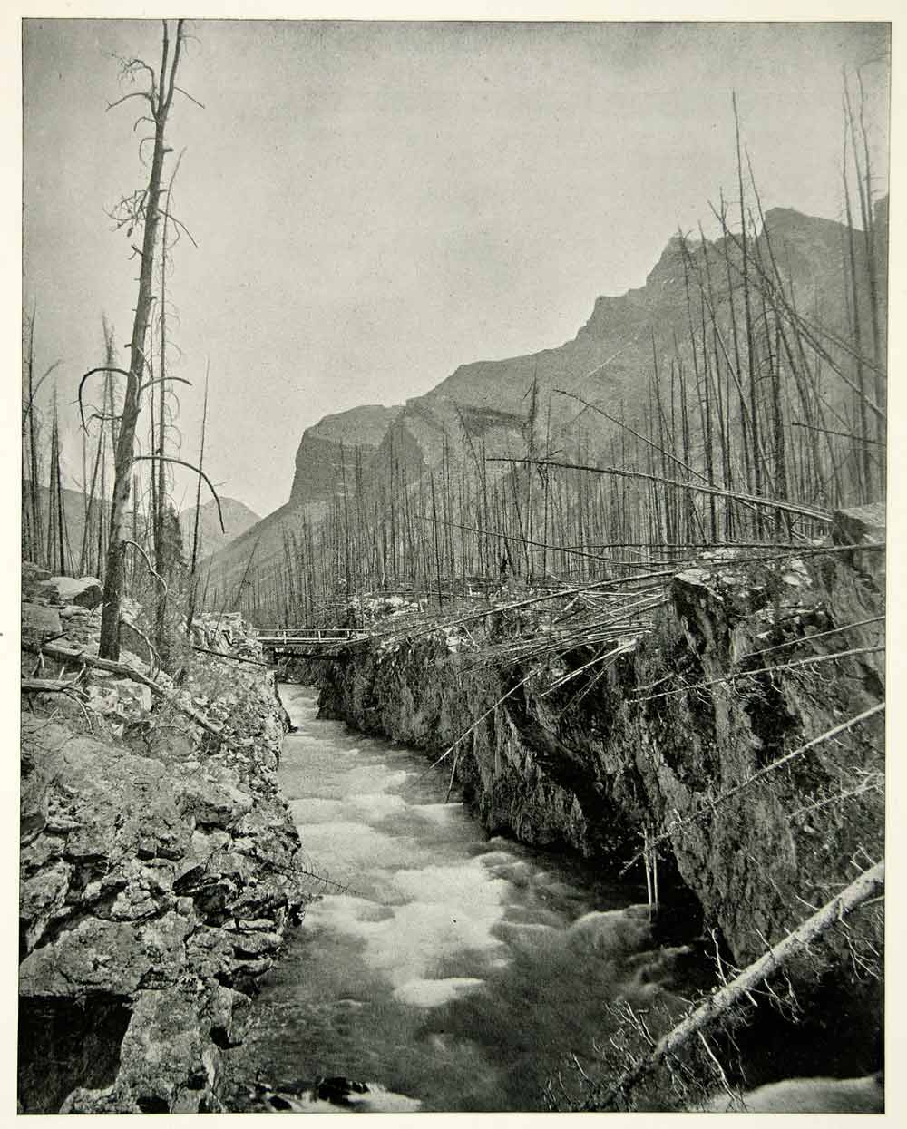 1894 Print Devils Canyon Banff National Park Canada Alberta Rocky Mountain YAC1