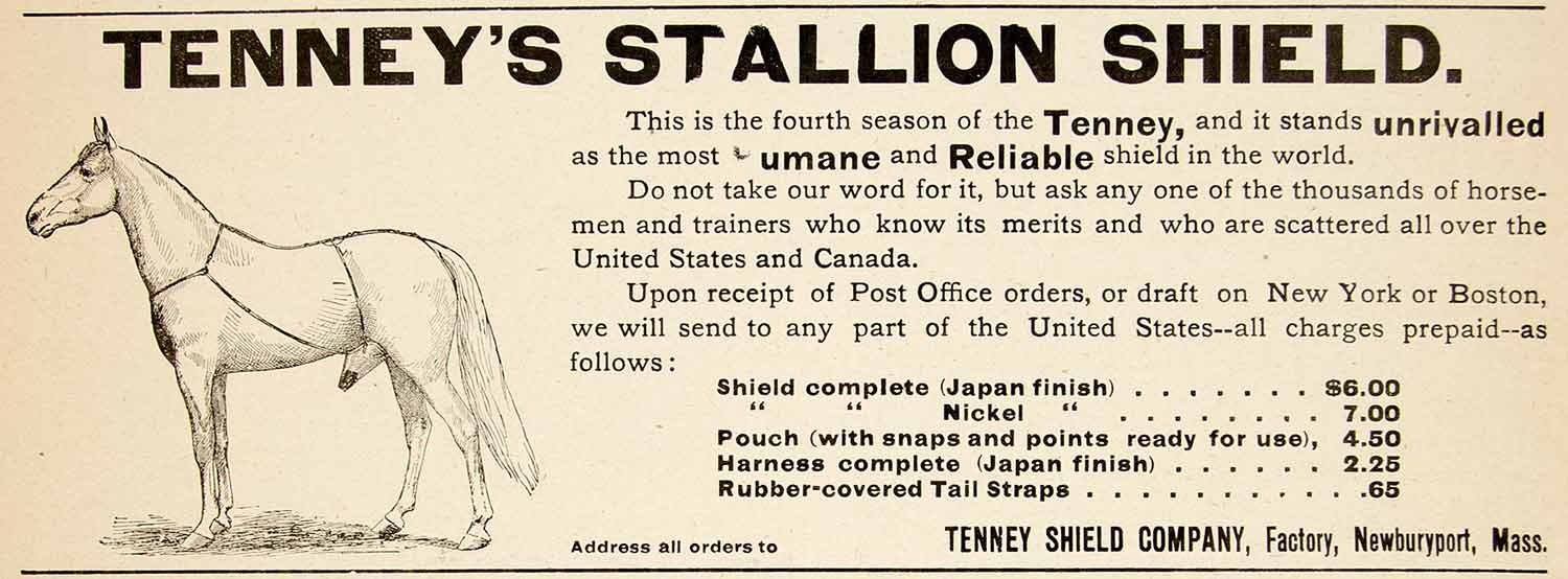 1896 Ad Antique Tenney Stallion Shield Horse Pouch Harness Newburyport MA YAHB1