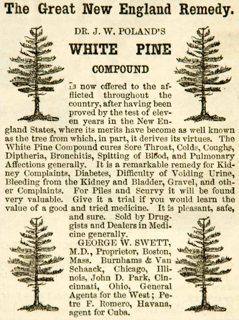 1865 Ad Dr. J W Poland White Pine Compound Remedy Health Tonic Medical YHW3
