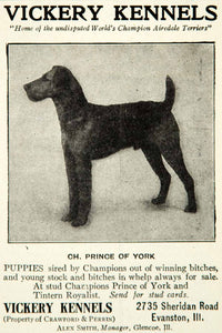 1912 Ad Vickery Kennels Airedale Terrier Dog Breed 2735 Sheridan Rd YNS1
