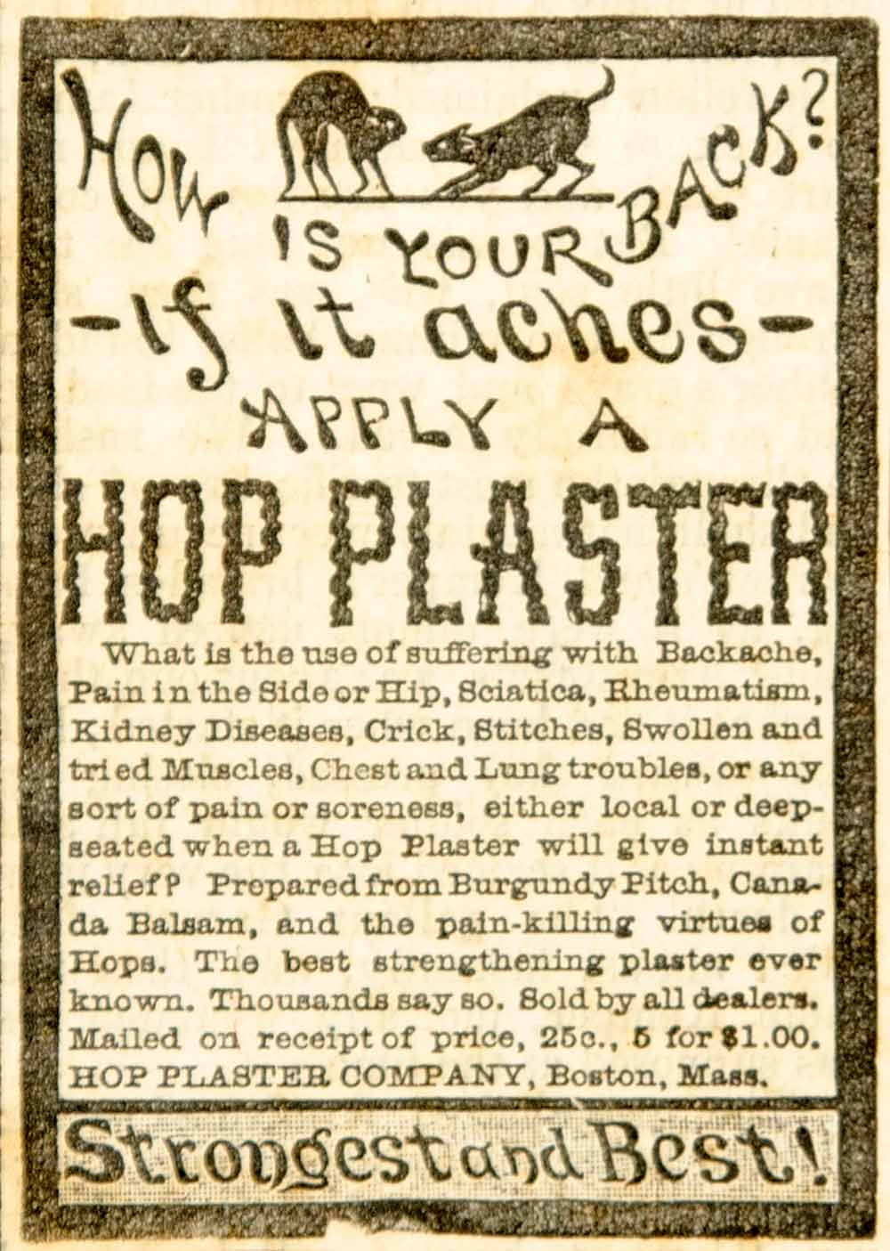 1886 Ad Hop Plaster Poultice Backache Disease Pain Cure Medical Quackery YOA1