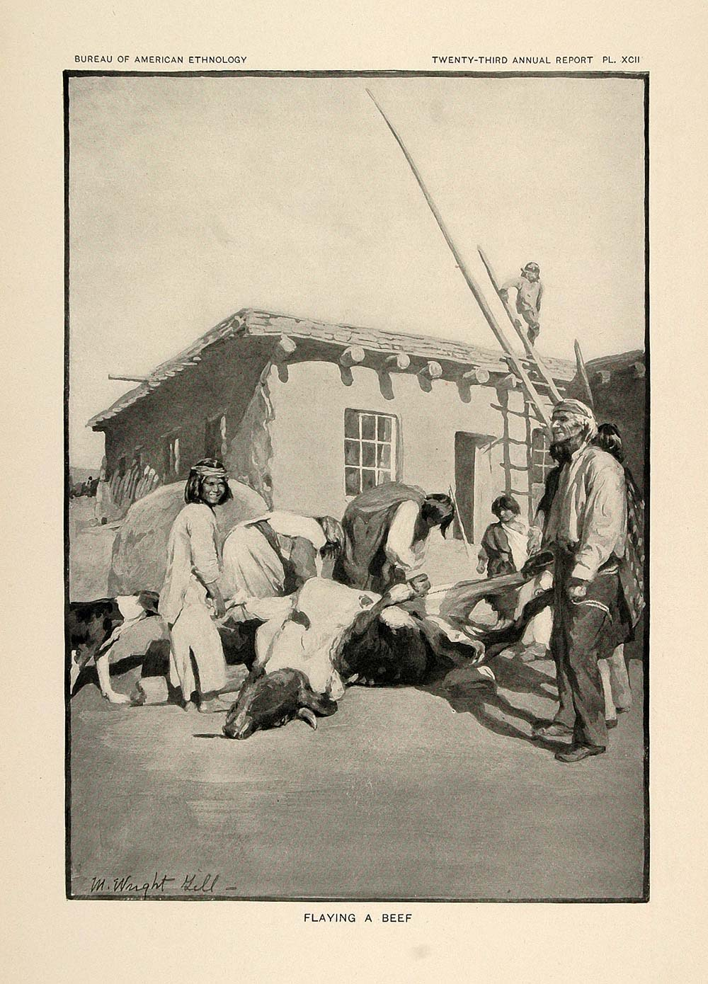 1904 Print Zuni Pueblo Indian Men Boys Butchering Cow ORIGINAL HISTORIC ZN1