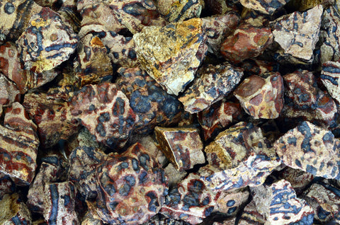 Animal Jasper Rough Stones from Mexico