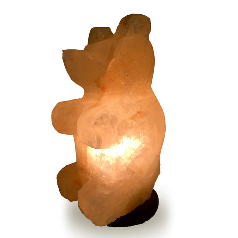 Himalayan Teddy Bear Shape Salt Lamp.