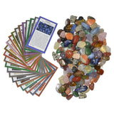 2 lbs XSmall Tumbled Polished Natural Gem Stones with Educational Rock Information Cards