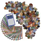 3 lbs XSmall Tumbled Polished Natural Gem Stones with Educational Rock Information Cards