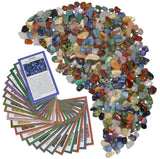 3 lbs XXSmall Tumbled Polished Natural Gem Stones with Educational Rock Information Cards