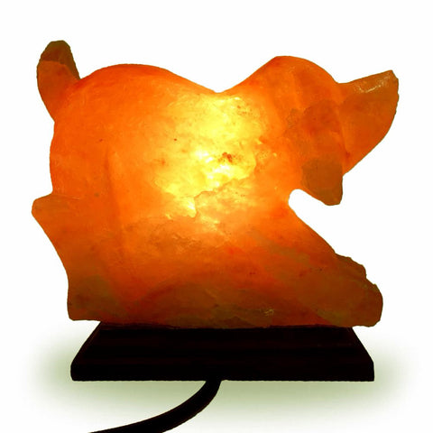 Natural Himalayan Dog Shape Salt Lamp