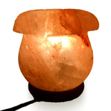 Natural Himalayan Lilly Flower Shape Salt Lamp