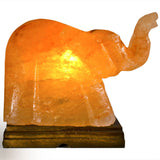 Natural Himalayan Elephant Shape Salt Lamp