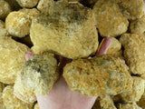 Drusy Quartz Geodes!  3 inch to 5 inch sizes!  Break Your Own Geode! Giant Unopened / Uncracked!