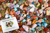 "3 lbs Rough Madagascar Stone Mix with 30 Page Stone Info Book - Small - 0.75"" to 1.25"" Avg"