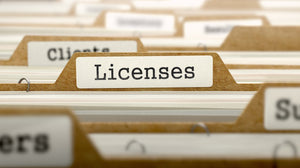 Business License Preparation Service - Delaware Business Incorporators, Inc.