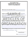 Silver Delaware Non-Profit (Exempt) Corporation Package Order Form