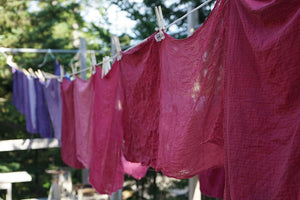 Natural Dyeing with Medicinal Plants 2/29