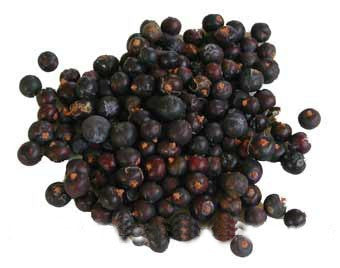 Juniper berries - Umami Tea
