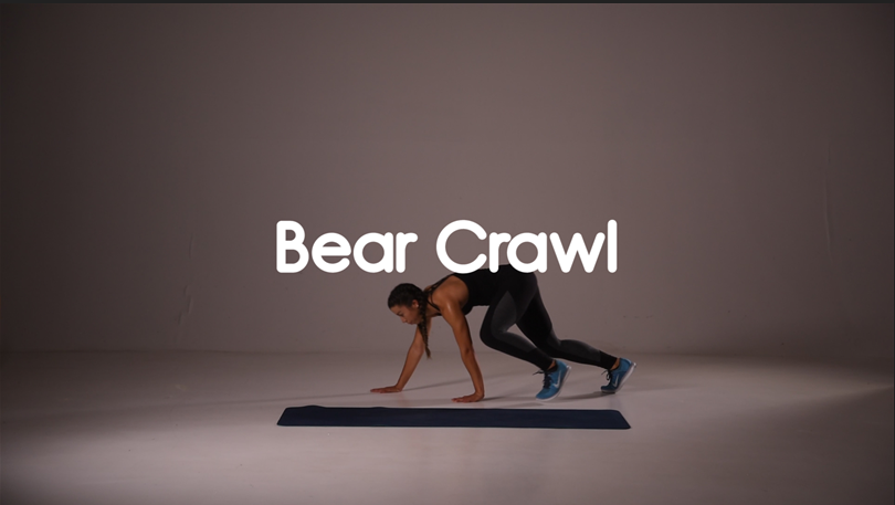 Bear Crawl