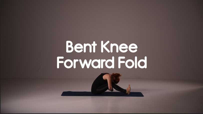 Bent Knee Forward Fold