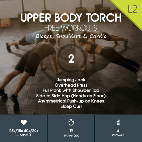 Upper Body Torch 02 - Biceps, Shoulders & Cardio Workout