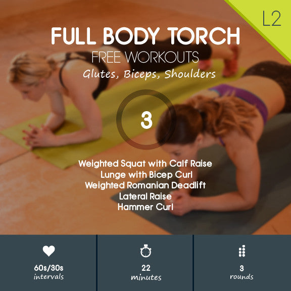 Full Body Torch 03 - Weighted Strength Workout