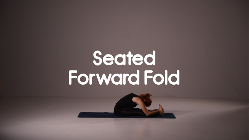 Seated Forward Fold