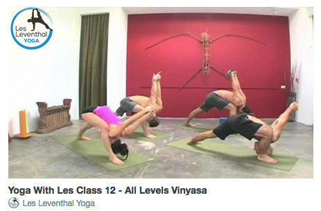 CLASS 12 • All Levels Vinyasa