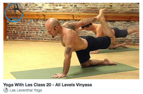 CLASS 20 • All Levels Vinyasa