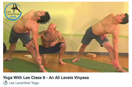 CLASS 8 • An All Levels Vinyasa
