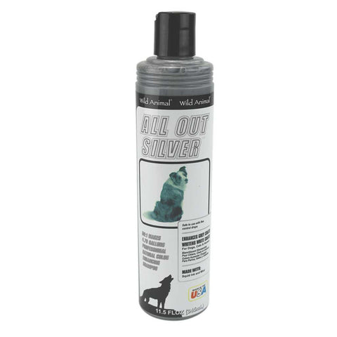 All Out Silver Shampoo (345 ml)