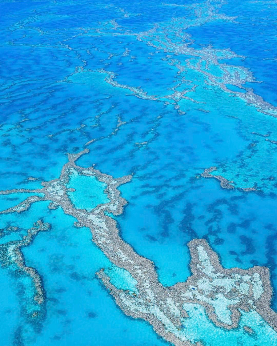 SW0477 - Great Barrier Reef