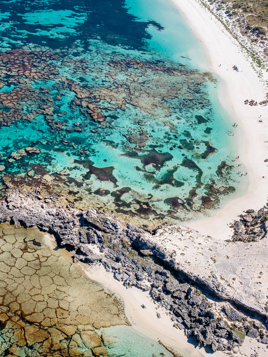 Salty Wings Rottnest Perth prints art drone