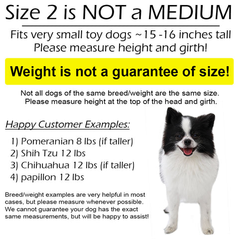 size examples for size 2