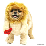 Pandaloon walking teddy bear lion halloween costume with arms