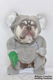 Pandaloon Walking Koala Pet Costume - Limited Edition