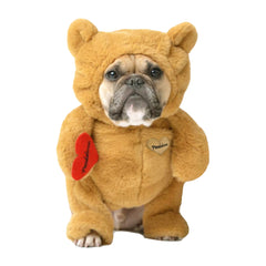 Pandaloon Brown Teddy Bear costume for dogs and cats. Frenchie model wearing a size 3