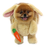 Pandaloon Walking Bunny Dog and Pet Costume