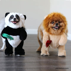 Pandaloon gift cards cute dog outfits from Shark Tank such as panda bear and lion costumes