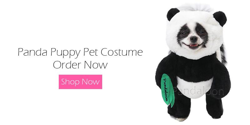 panda walking teddy bear costume with arms pets dogs cats