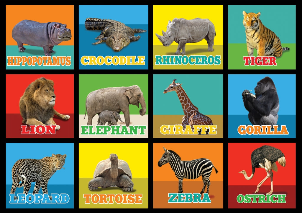 Animal Picture Squares Rug 12 - KidCarpet.com