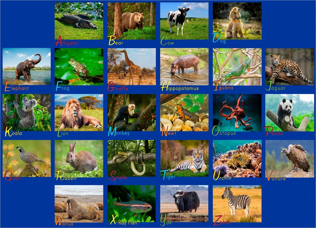 Alphabet Animals Photo Rug - KidCarpet.com